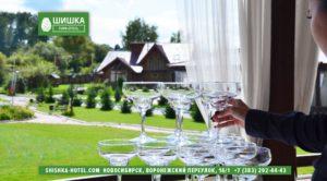 Ресторан у лесной зоны Новосибирск